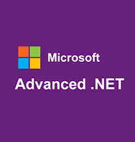 advanced-net