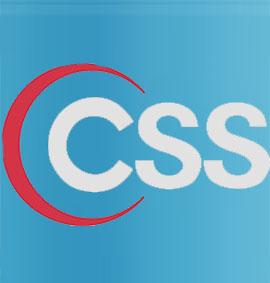 best css training institute